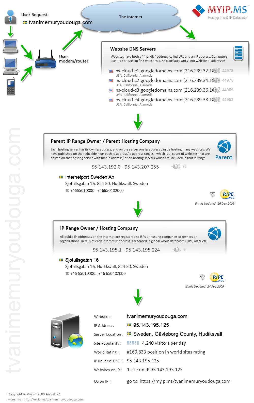 Tvanimemuryoudouga.com - Website Hosting Visual IP Diagram